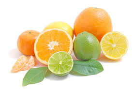 Citrus foods to avoid with antibiotics